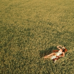 Wheat field and silk dress