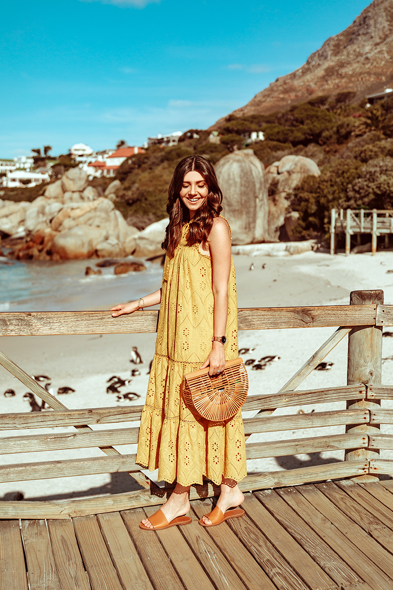 larisa costea,larisa style, larisa in south africa, larisa costea blog,south africa, cape town, simons town,boulders beach,penguin,penguins, beach, africa, best vacation, best destination, travel,traveler, eyelet dress, lace dress, embroidery dress,mustartd yellow dress, chicwish, summer outfit, summer dress, ootd, holiday style, outfit inspiration,madewell slides,shopbop, leather slippers brown slippers,cult gaia bamboo bag, soft curls, ray ban sunglasses