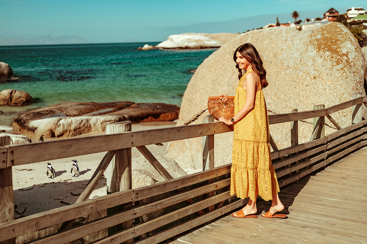 larisa costea,larisa style, larisa in south africa, larisa costea blog,south africa, cape town, simons town,boulders beach,penguin,penguins, beach, africa, best vacation, best destination, travel,traveler, eyelet dress, lace dress, embroidery dress,mustartd yellow dress, chicwish, summer outfit, summer dress, ootd, holiday style, outfit inspiration,madewell slides,shopbop, leather slippers brown slippers,cult gaia bamboo bag, soft curls, ray ban sunglasses, south african penguin