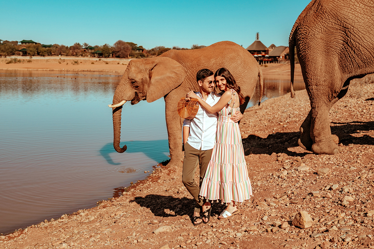 larisa costea,larisa costea blog, fashion blog, travel blog, south africa,larisa in south africa, chicwish,buffelsdrft, game lodge, safari, elephants, baby elephants, oudtshoorn, chicwish dress, stripes, ray ban sunglasses,cult gaia bag, shopbop, steben slides, slippers, power couple, adrian, oots, summer outfit,outfit inspiration, best vacation,holiday, best destination, best hotels, tent, camp, africa, animals, animal lover